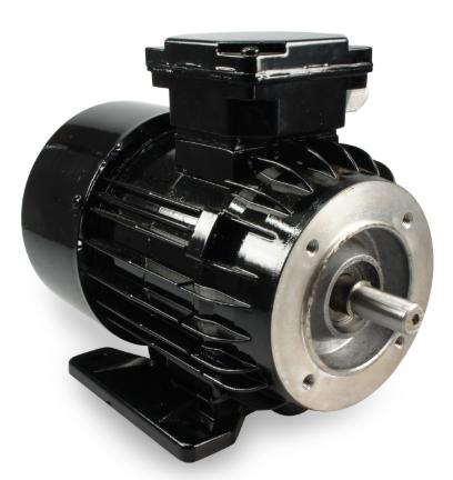 Двигатель молочного насоса FMP110
